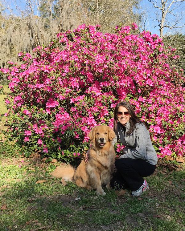 Charleston parks