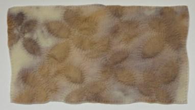 Ecoprint on wool felt with hand stitching. 2016