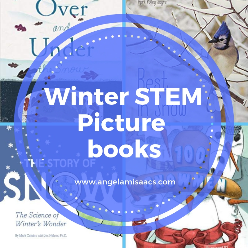 Winter STEM Picture Books