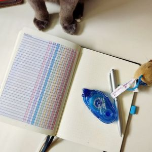 Printable bullet journal reading log glued into bullet journal. Cat feet and toy mouse visible next to book.