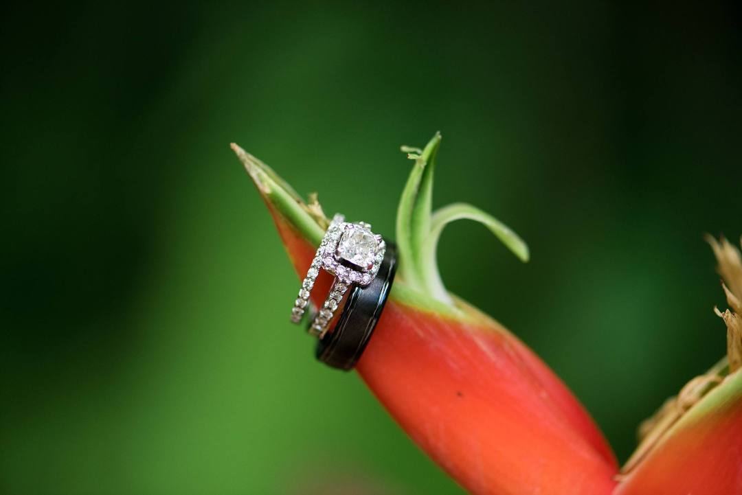 closer up of wedding rings