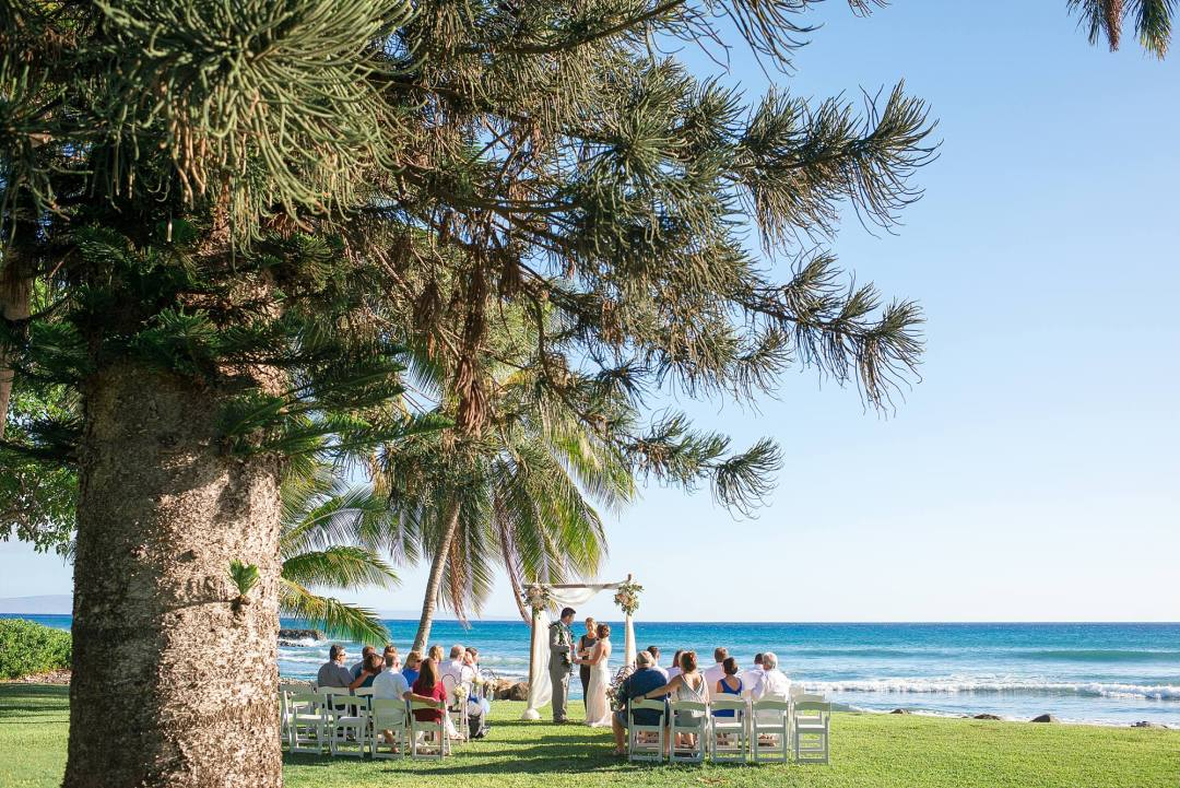 tropical trees and blue ocean wedding shot