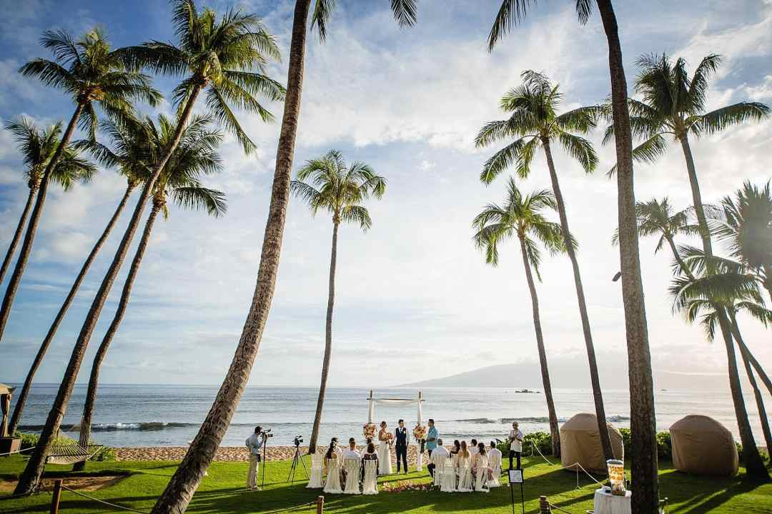 hyatt oceanfront lawn wedding