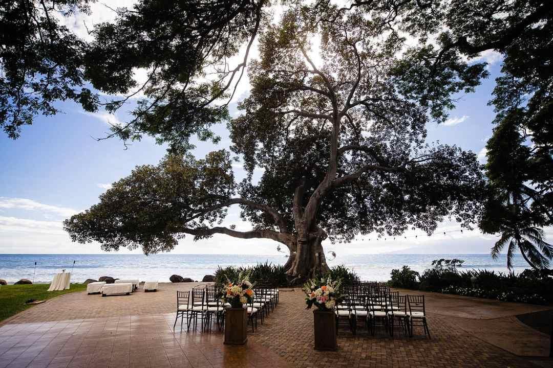 wedding ceremony under large tree at Olowalu Plantation House