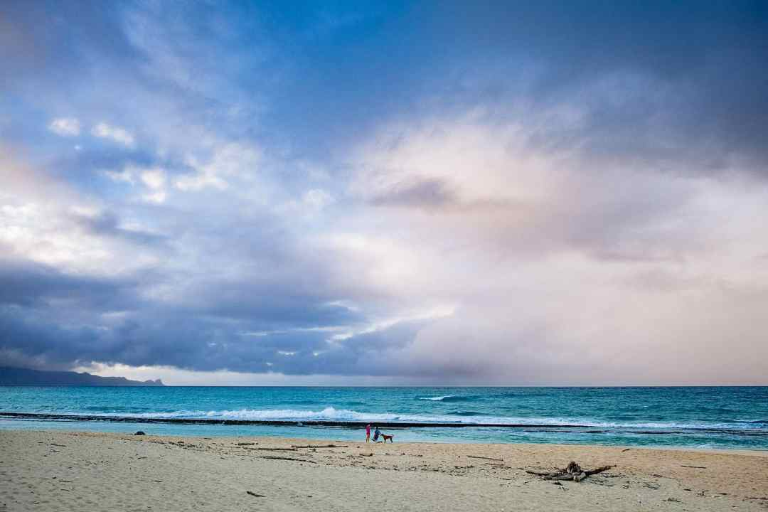 gorgeous north shore maui beach proposal in