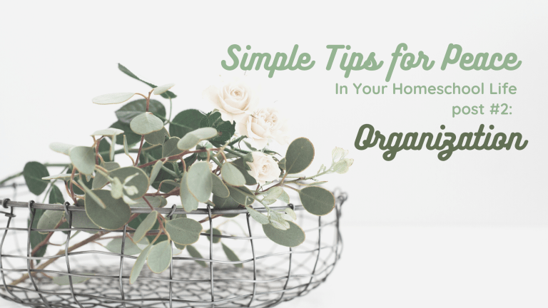 Simple Tips for Peace in Your Homeschool Life, part 2