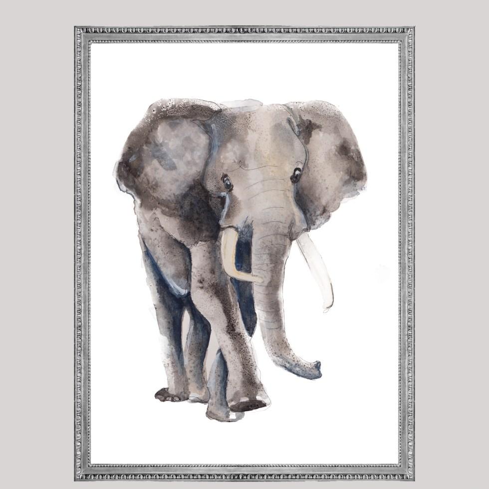 Oliefant animal dieren print, Natuurlijk Angelart, Angela Peters. Illustratie Ink aquarel