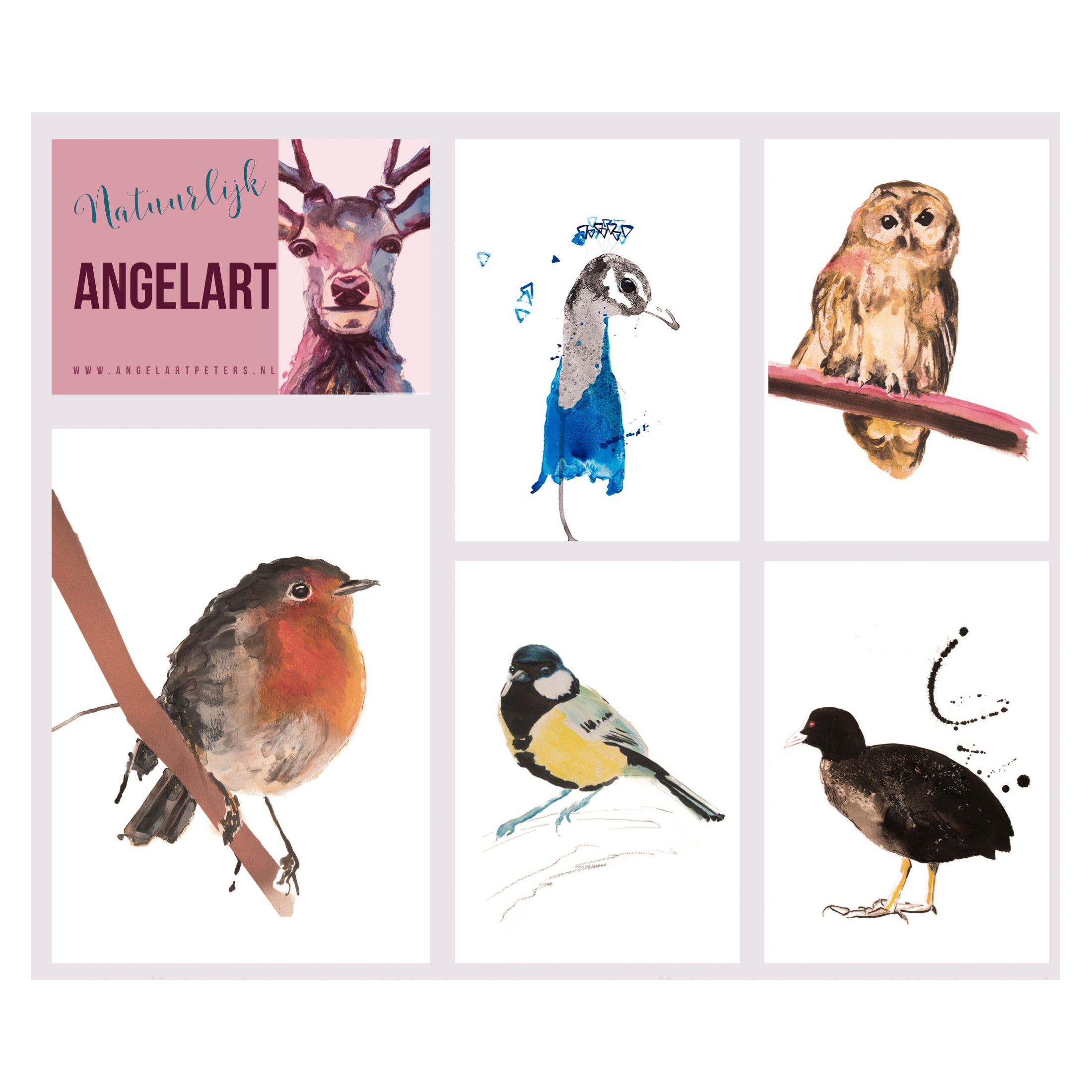 Vogel illustraties