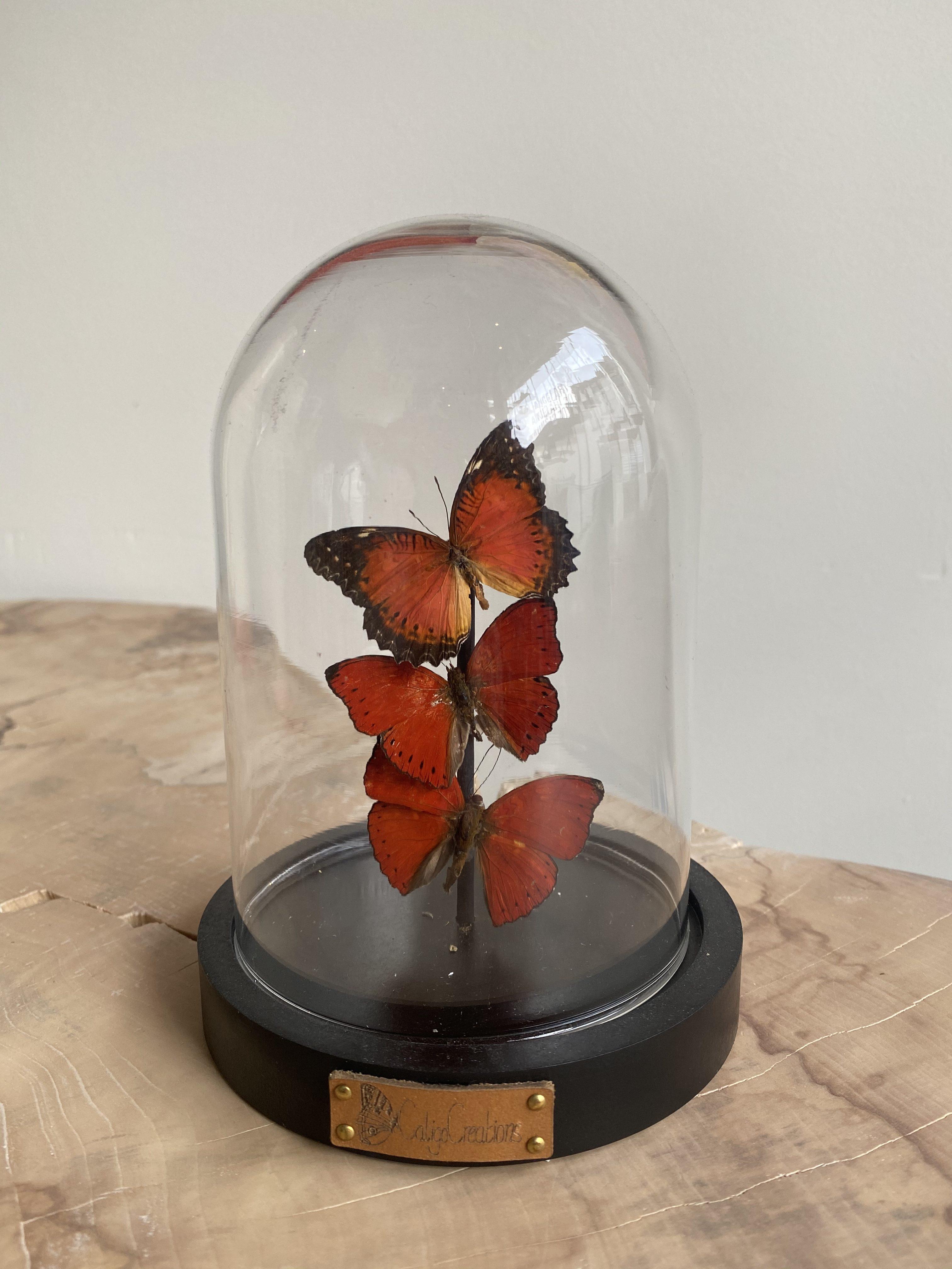 Vlinder stolp met drie rode vlinder