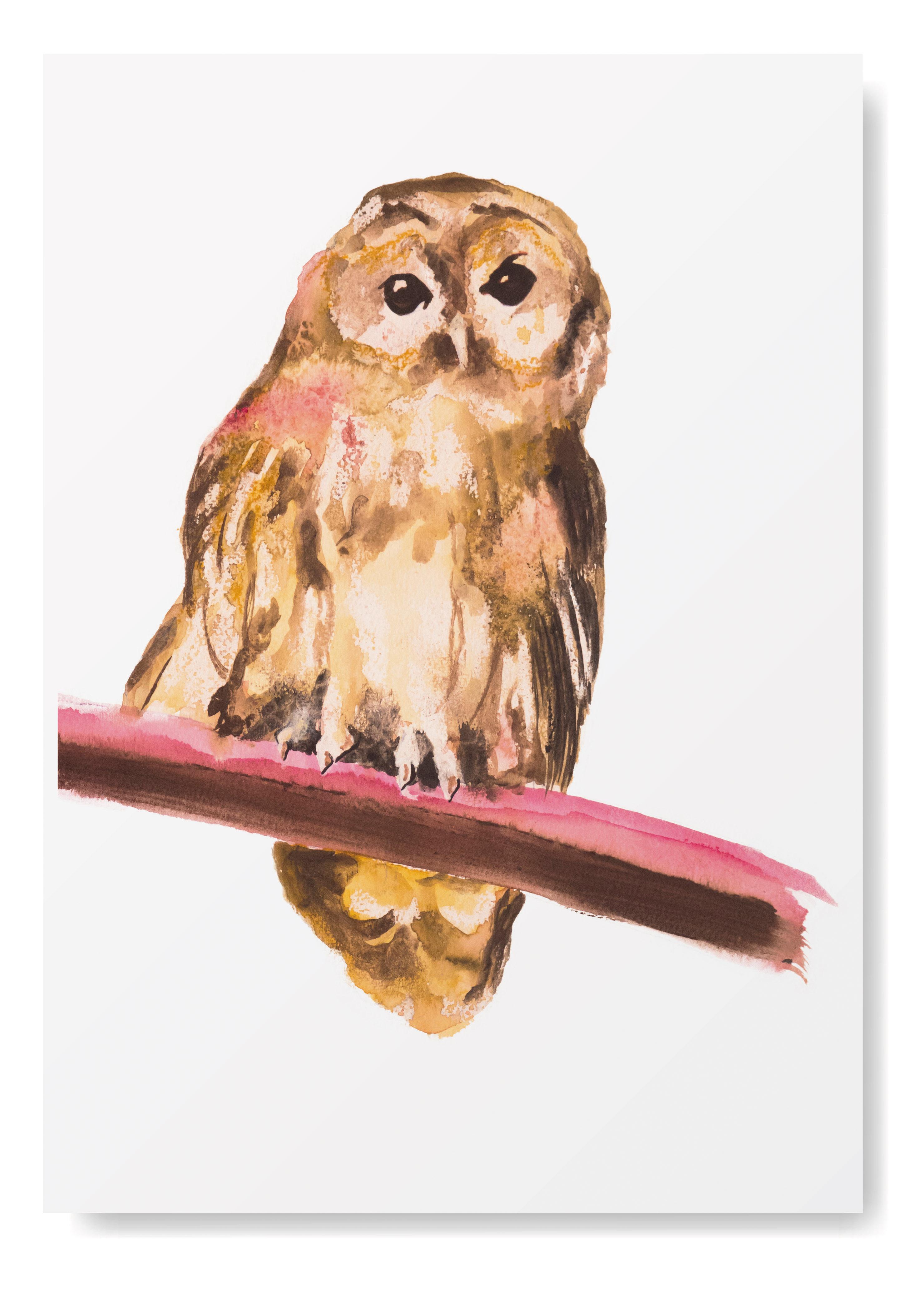 Angela Peters illustratie, dieren vogel kaarten Angelart Kunst&zo uil