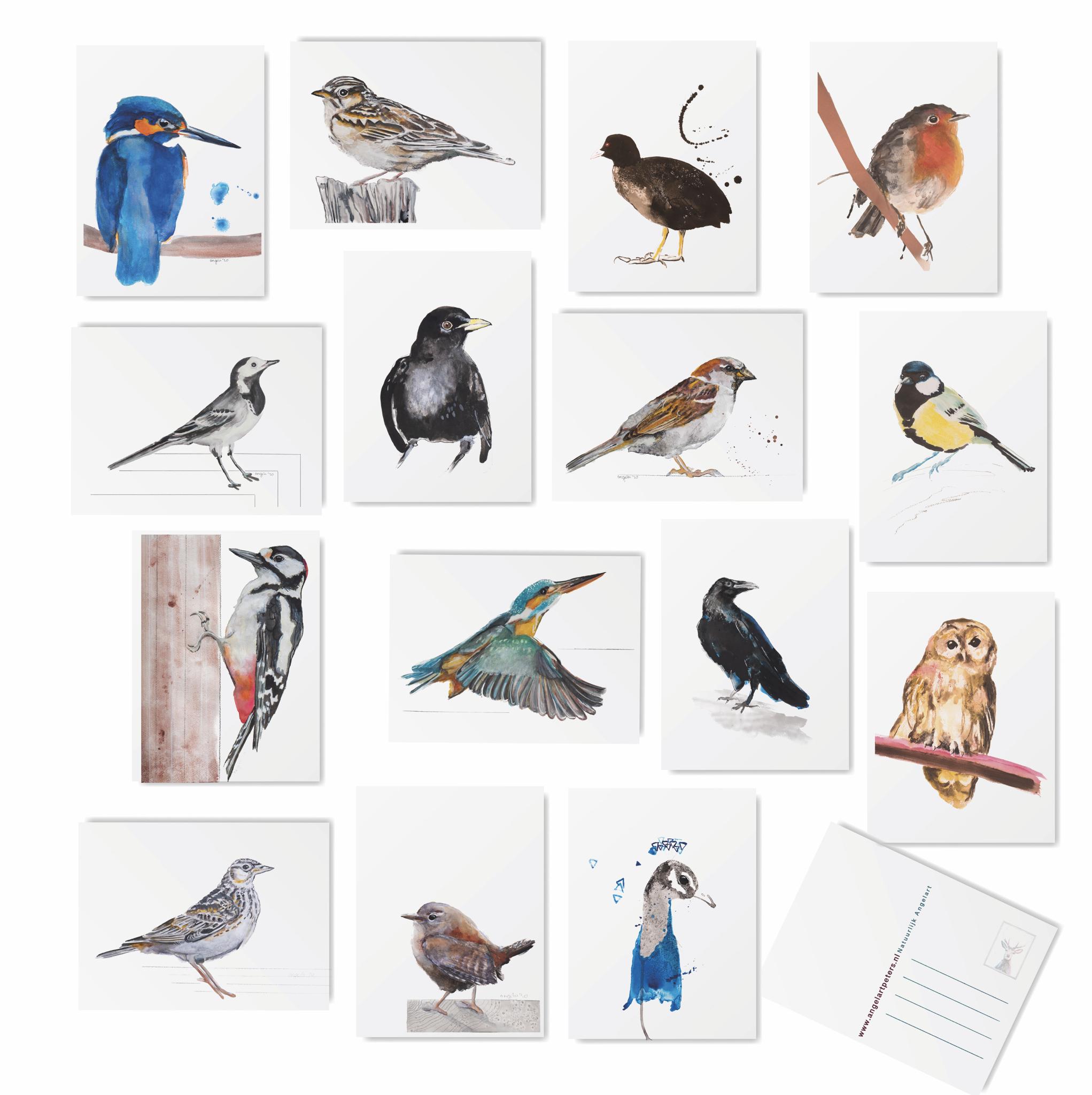 inheemse vogel kaarten Angela Peters galerie Hattem