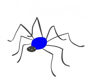 INSECTS/ MINIBEASTS/ SPIDERS