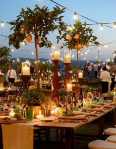 Vegan Destination Wedding
