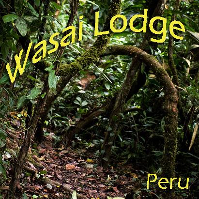 wasai_lodge