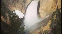 lower falls yellowstone