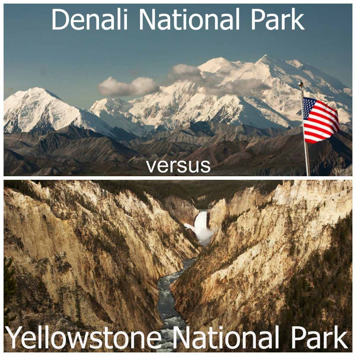 Denali vs Yellowstone National Parks