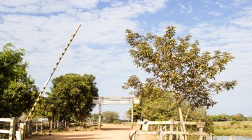 Pantanal Expeditions