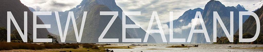 a banner that links to new zealand blog posts