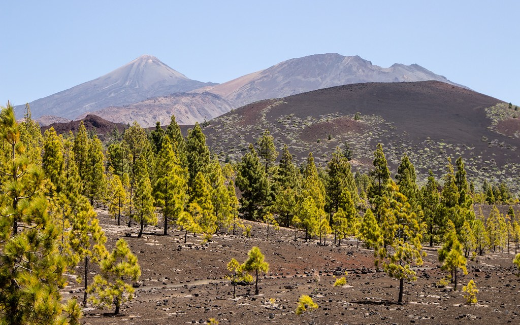Teide National Park - A Guide to Hiking Mt. Teide