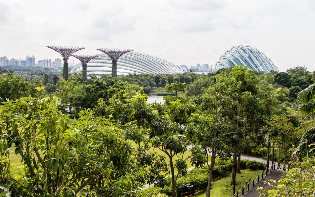 15 Photos that will Make You Want to Travel to Singapore