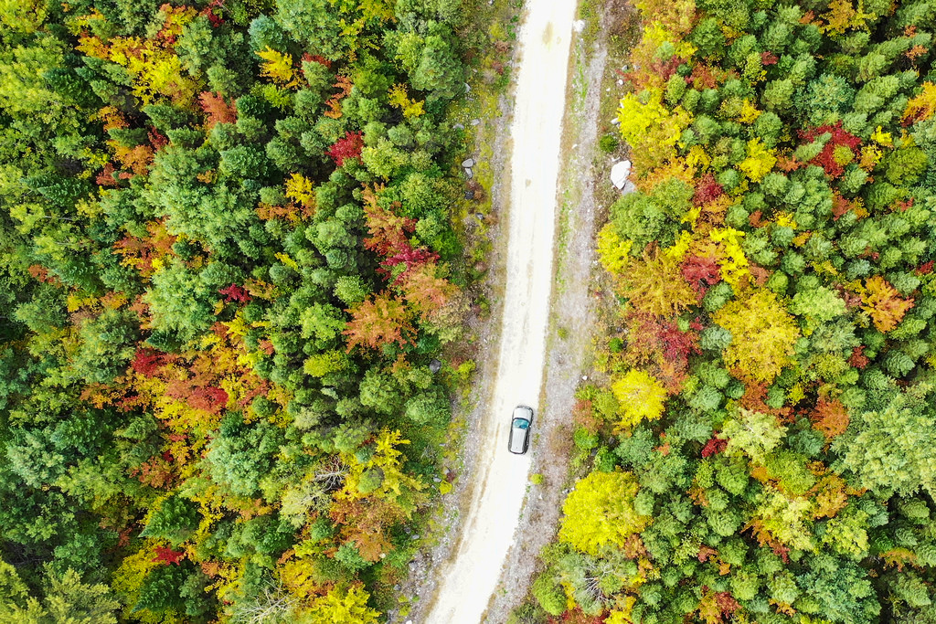 2-Week New England Road Trip: The Perfect Fall Foliage Itinerary