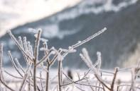 lakelouise-icewinter07