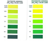 API Ammonia Test Kit - $12.45