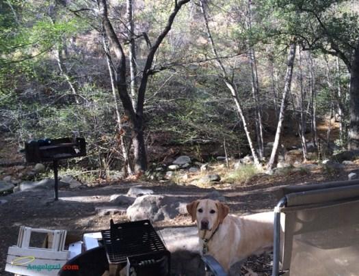20140312-our-campsite
