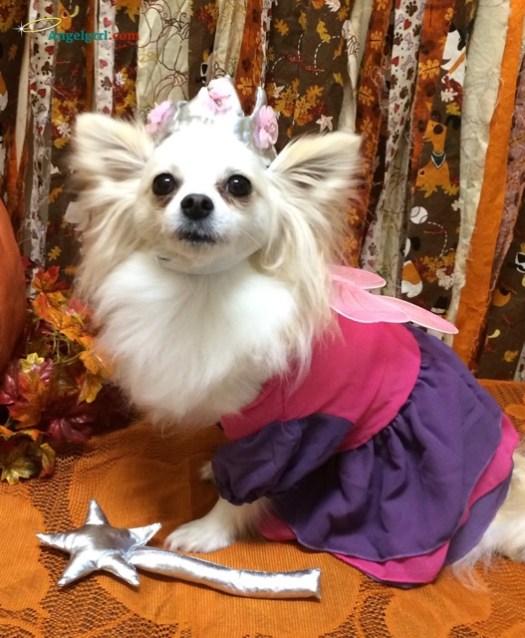 20141022-princess-freya