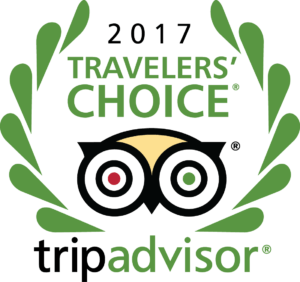 Trip Advisor award: 2017-2019