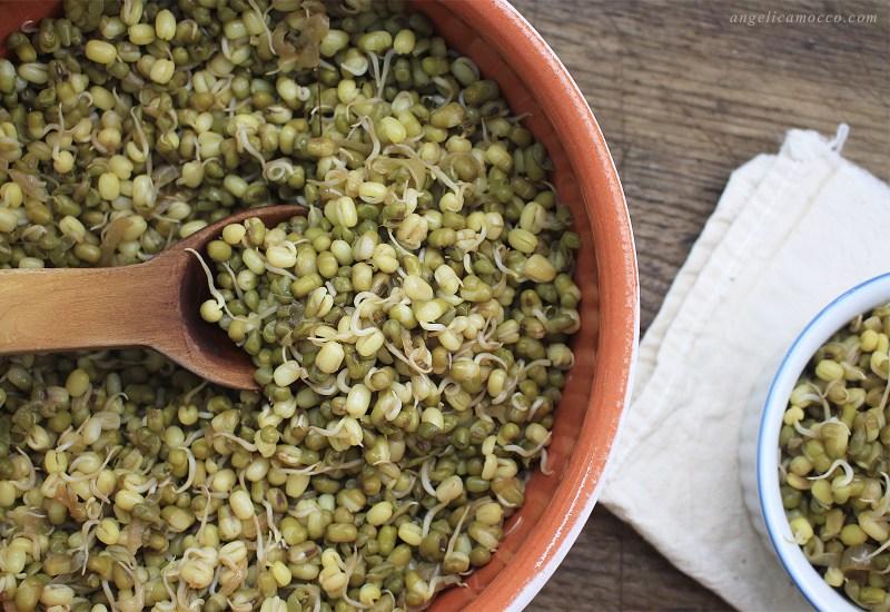 germogli di soia verde saltati in padella