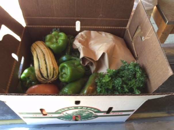 Fuller than this and your peppers and bagged tomatoes will get smashed when we close the box