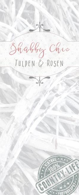 Tulpen Rosen Shabby