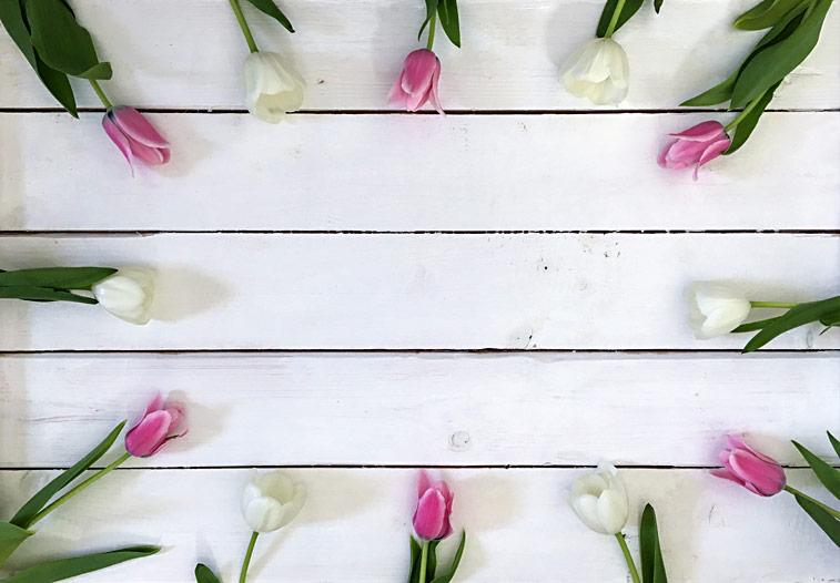 Tulpen Blumenbild Platz fr Text auf Holzwand