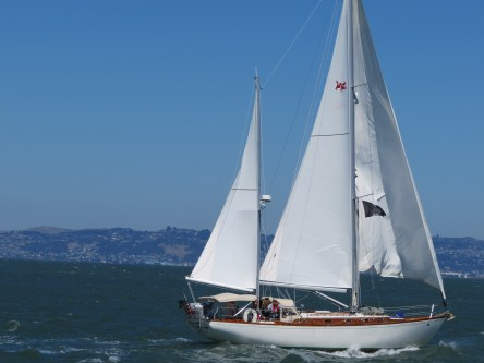 August: San Francisco Bay