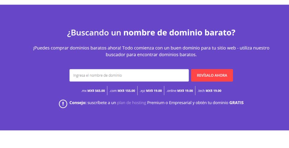 buscar dominio web
