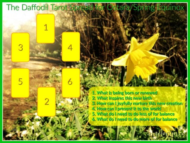 The Daffodil Tarot Spread for Ostara Spring Equinox