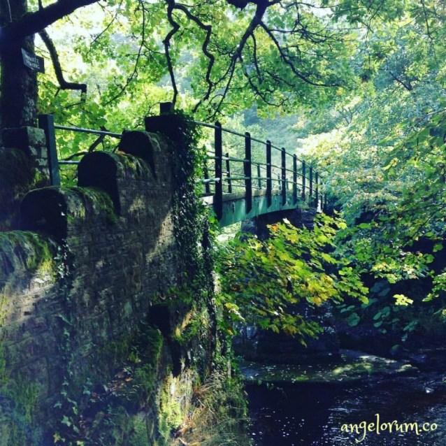 bridge over river balder teesdale