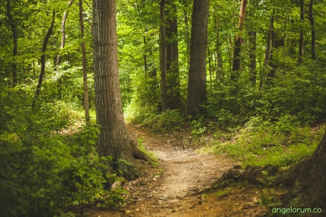 3 steps to creating your own spiritual path