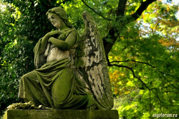 Archangel Raphael Mental Clarity Tarot Spread