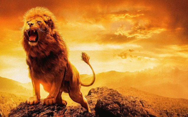 Coeur de Lion a Leo Full Moon Tarot Spread for Courage