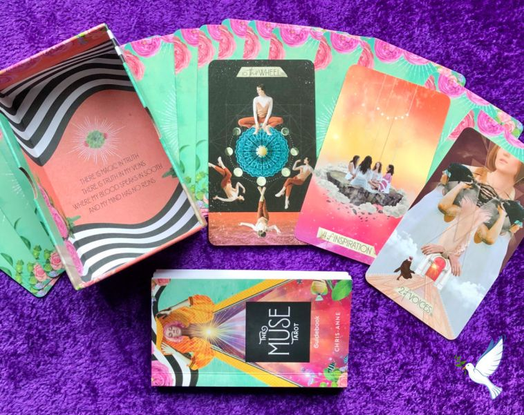 the muse tarot review and deck interview