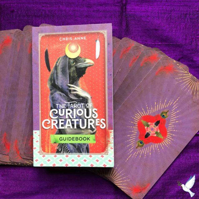 The Tarot of Curious Creatures Review