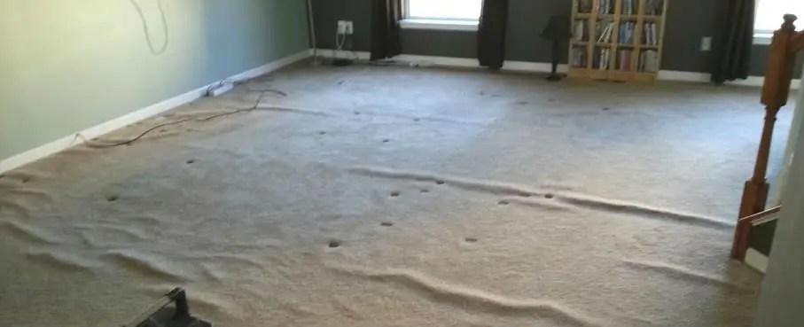 Carpet Repair, Carpet Stretching Service Philadelphia suburbs