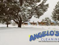 Clean My Carpets During Winter? -ANGELOS CLEANING