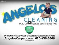 Angelo's Carpet Cleaning Video - carpet cleaning services ...