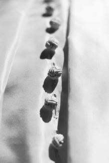 V&A STILISTI - CAMCIA FERRE' - la camicia bianca secondo me2