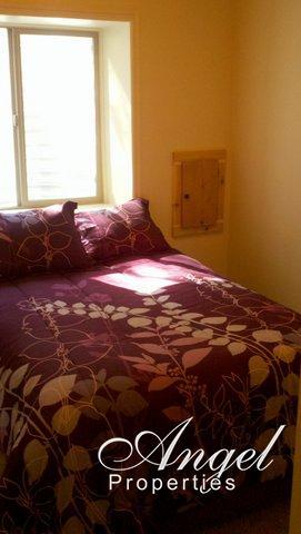 Bedroom #3 (Downstairs)
