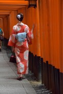 Teries rojas de Fushimi-Inari