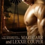 Review: Misplaced Princess (Foreign Affairs #1) by  Mari Carr & Lexxie Couper